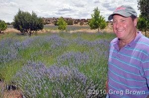 Owner Mike Teeple shows us around Red Rock Ranch Lavender Farms.